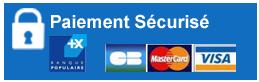 Paiement sécurisé par carte bancaire avec la Banque populaire